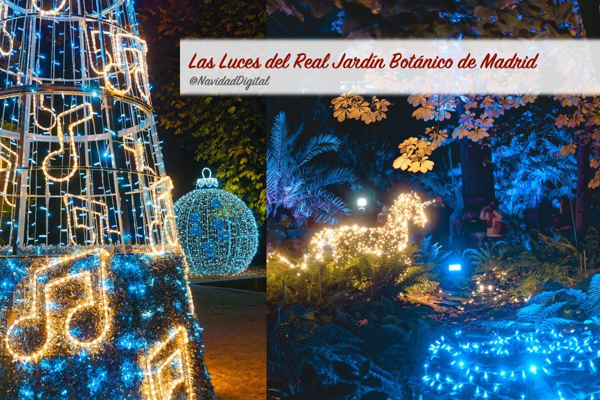luces navidad botanico madrid